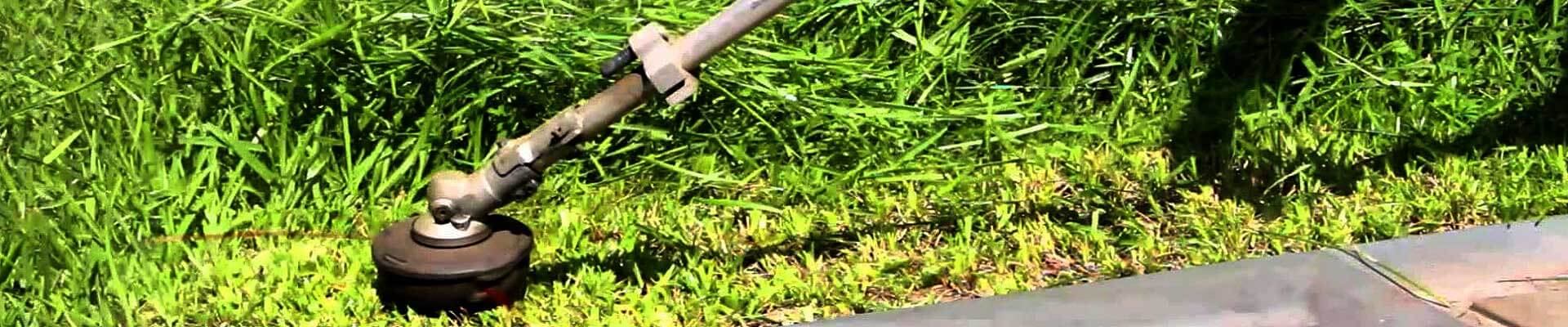 Weed Abatement Trimming